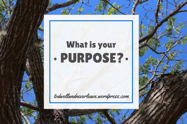 What is your purpose full